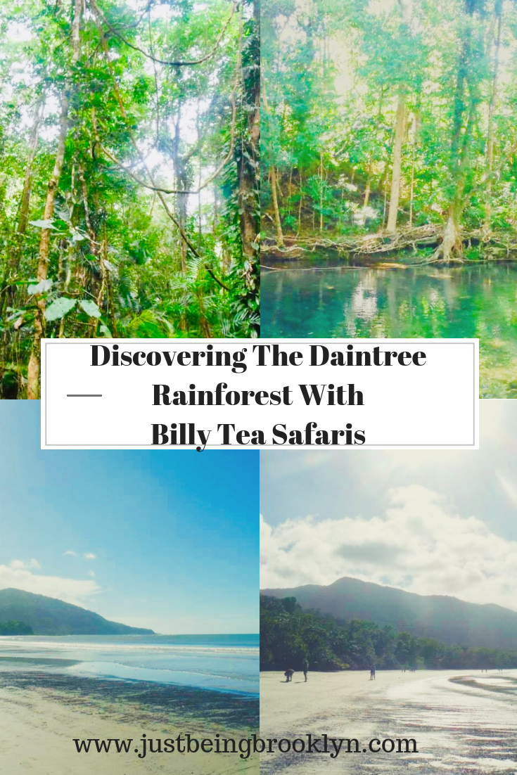 Discovering The Daintree Rainforest With Billy Tea Safaris