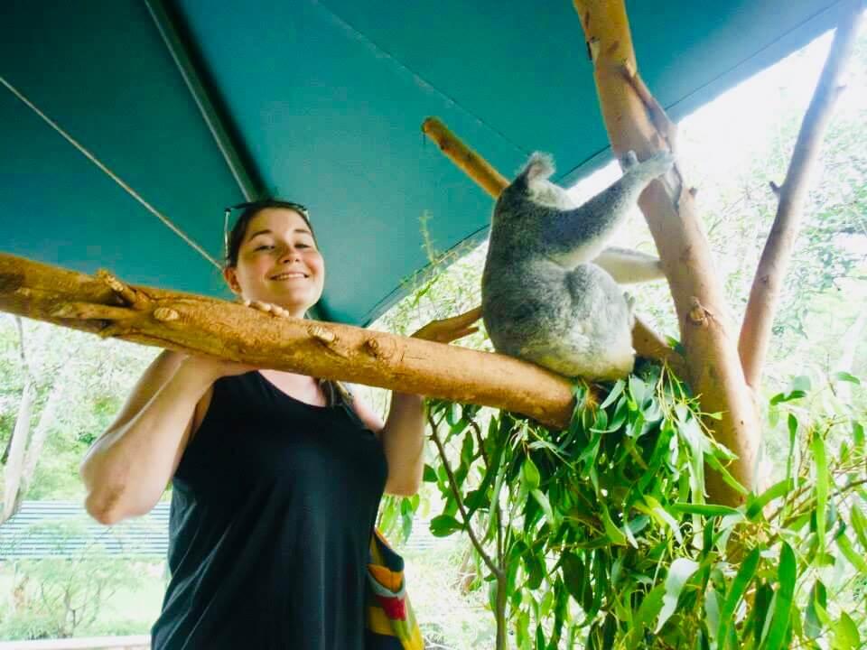 Vomiting at the Australia Zoo