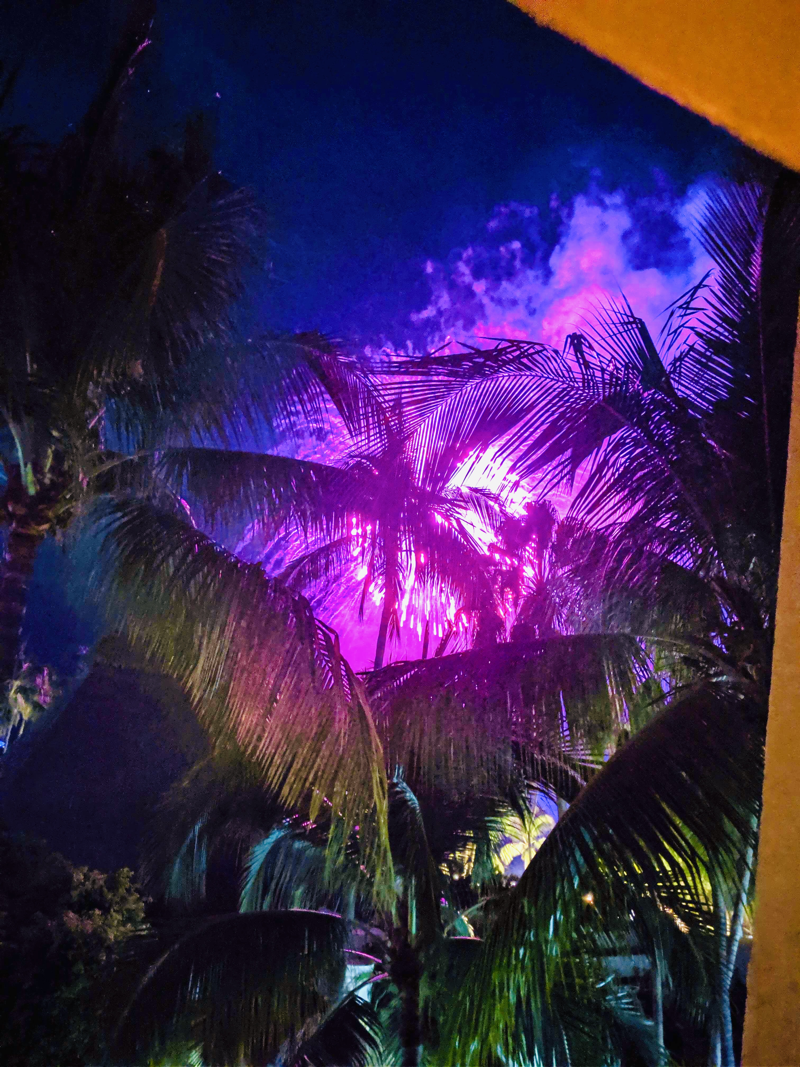 Fireworks outside our hotel room at the Westin, and coconut trees