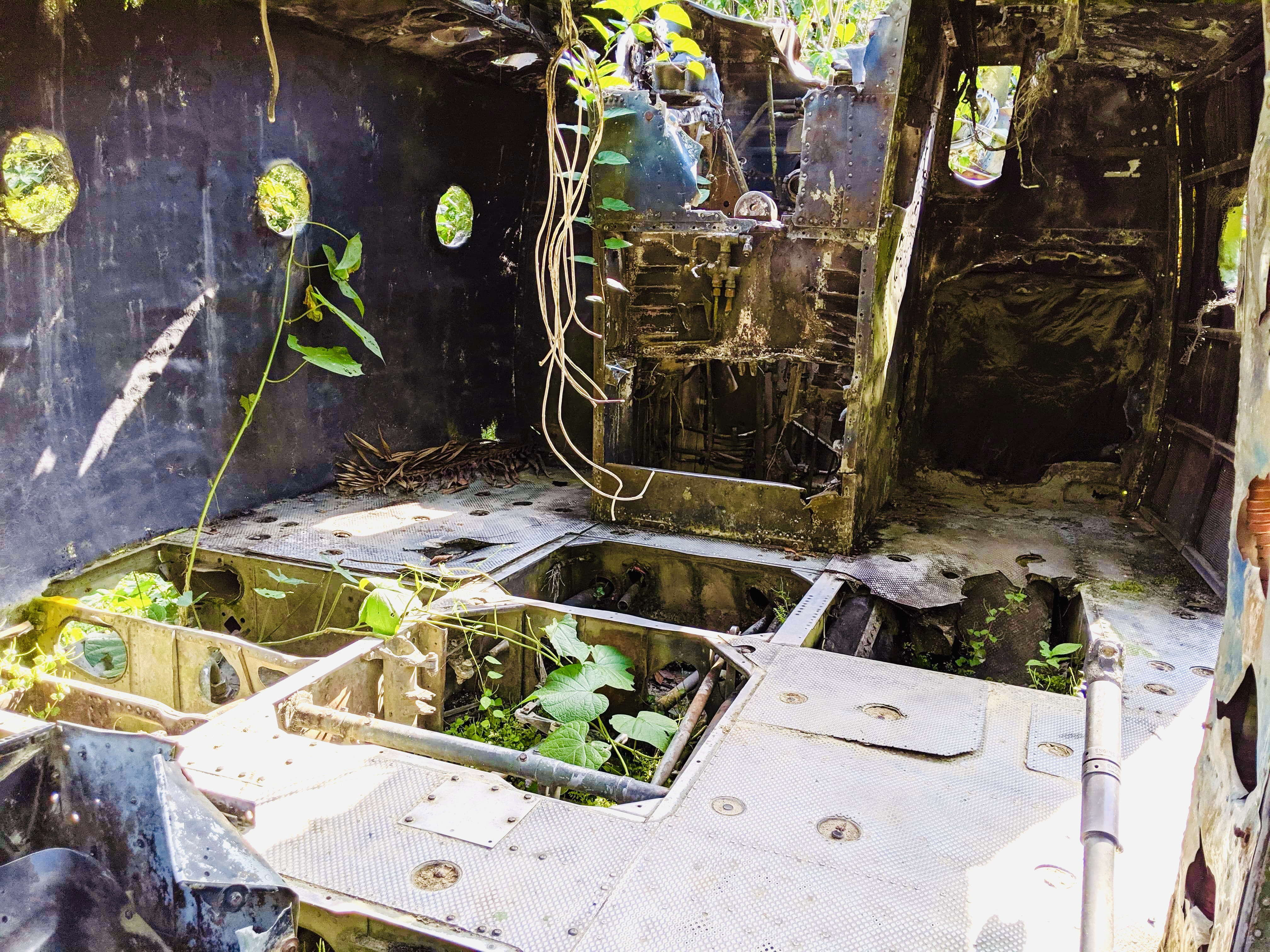 Inside the plane from Predator, with holes in the floor, and plant overgrowth