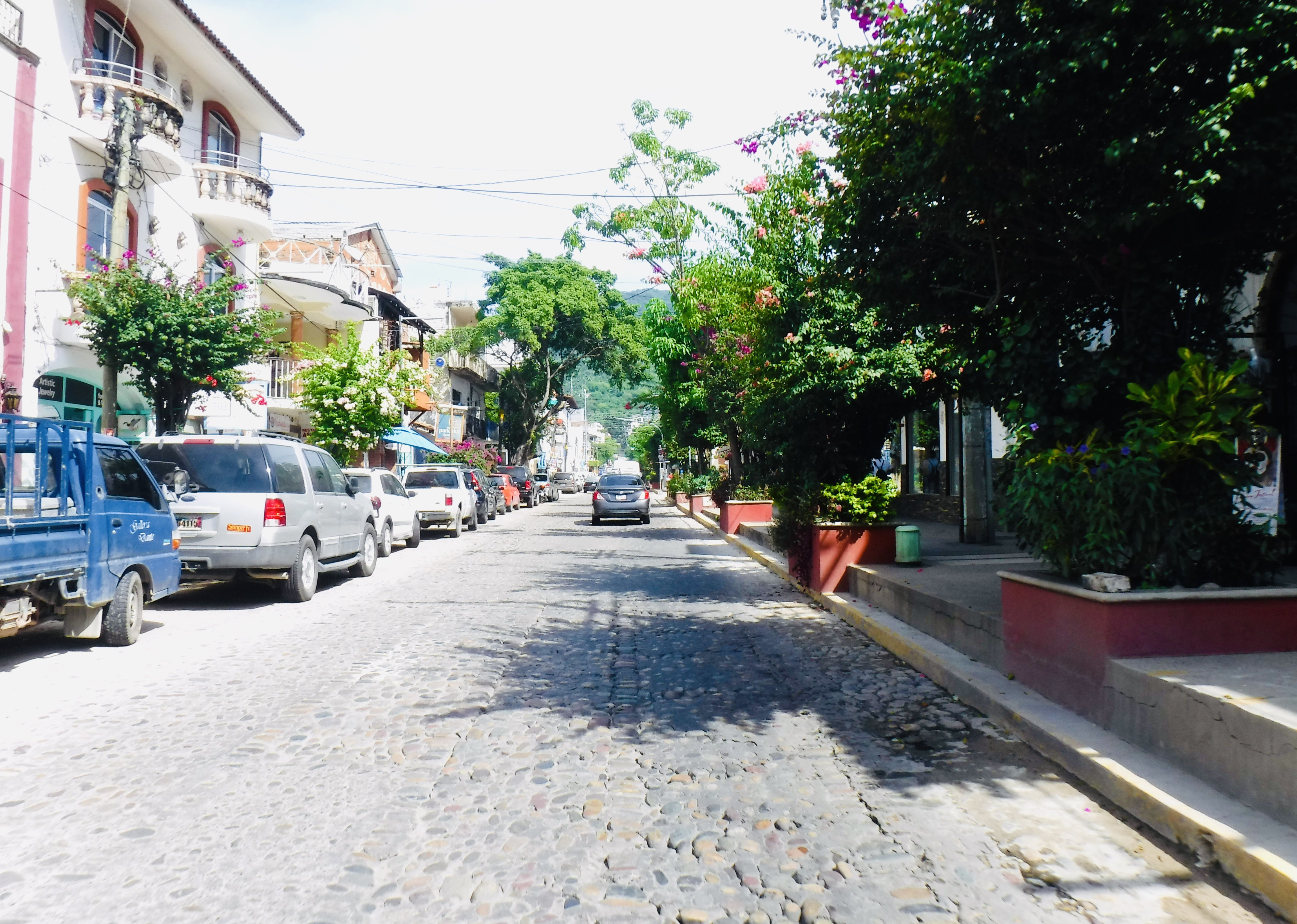 The cobble road we were driving on, with flowers and trees on the sidewalk