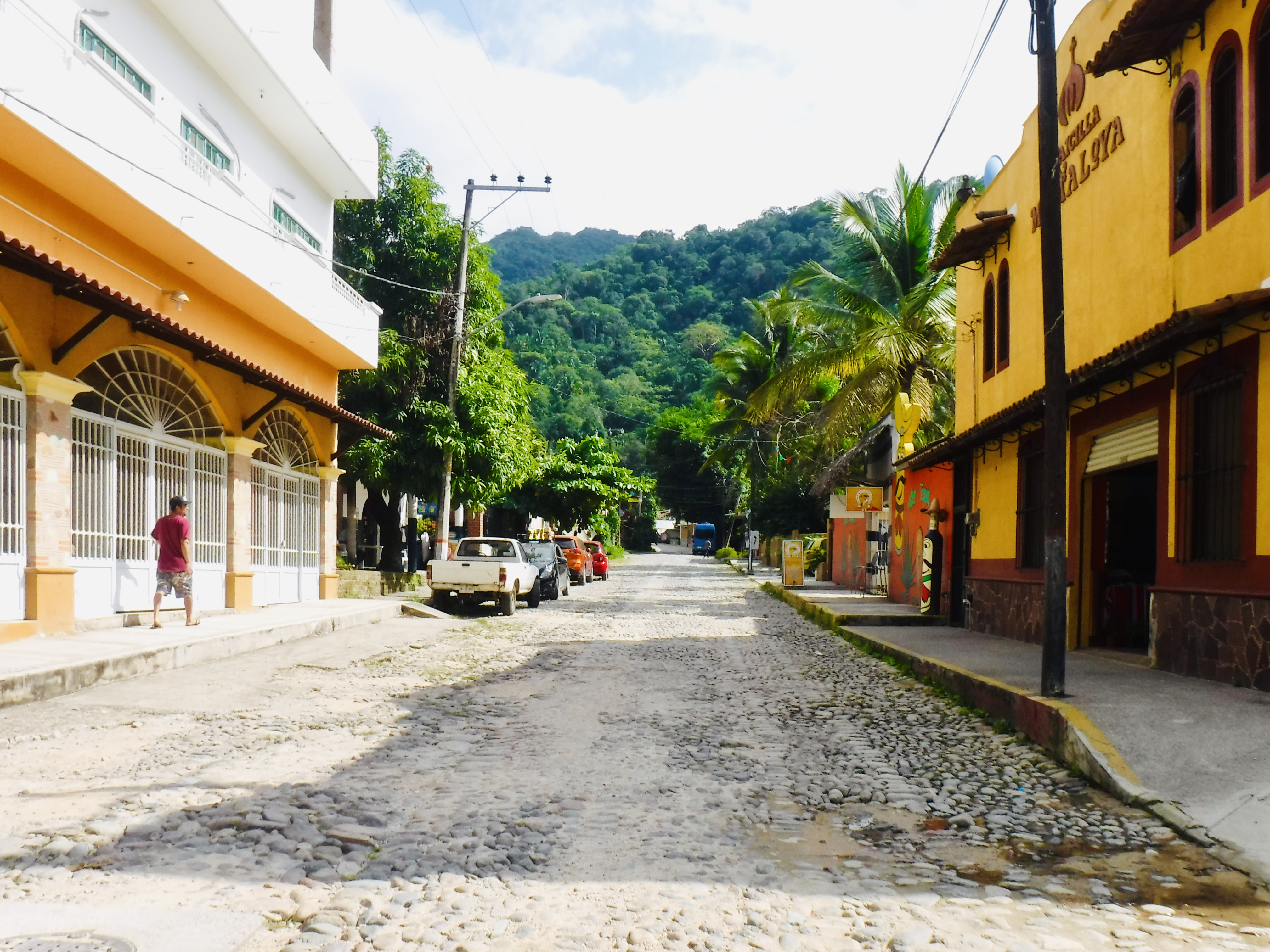 Cobbled street with views of the bushy mountains