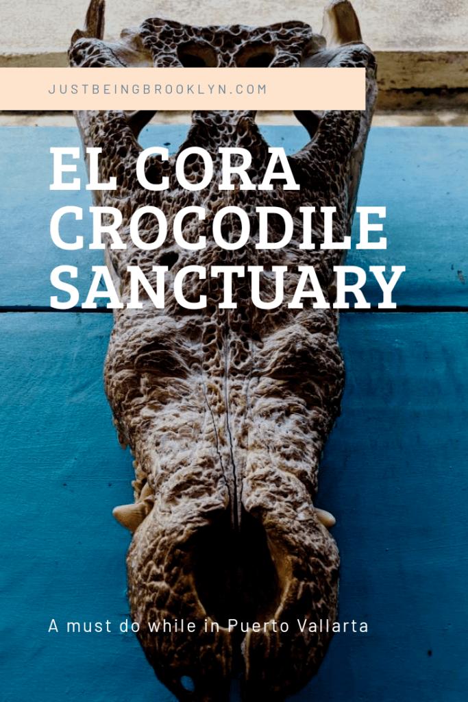 Visiting El Cora crocodile Sanctuary